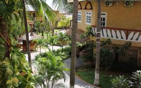 Картинка Природа, Дома, Пальмы, Парк, Растения, Nature, Park, Palm Trees, Plants, Houses