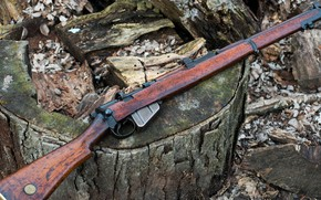 Картинка оружие, винтовка, weapon, энфилд, rifle, smle, Lee-Enfield, Ли-Энфилд, enfild no3, enfild