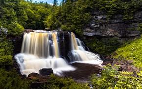 Картинка зелень, пейзаж, природа, водопад