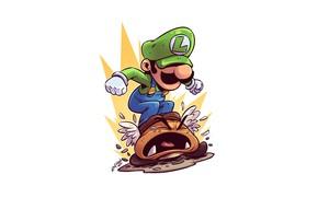 Картинка Nintendo, Luigi, Derek Laufman