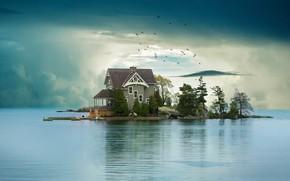 Картинка облака, деревья, птицы, озеро, дом, рендеринг, остров, стая, сосны, домик, особняк, водоем