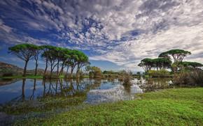 Картинка небо, облака, деревья, Греция, Kalogria