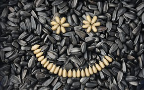 Картинка smile, sunflower, seeds