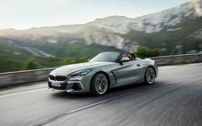 Картинка серый, скорость, BMW, ограждение, родстер, горная дорога, BMW Z4, M40i, Z4, 2019, G29