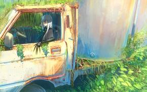 Картинка девушка, грузовик, когти, кабина