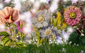 Картинка Grafika, Kwiaty, Trawa