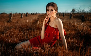 Картинка поле, трава, взгляд, девушка, солнце, природа, поза, портрет, макияж, платье, прическа, шатенка, красивая, сидит, в …