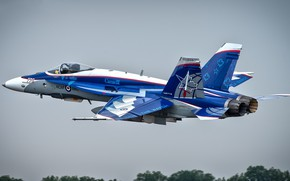 Картинка McDonnell Douglas, CF-188 Hornet, McDonnell Douglas CF-188 Hornet
