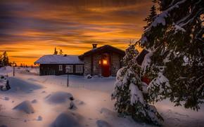 Картинка зима, снег, деревья, пейзаж, закат, природа, дом, ели, Норвегия, Jørn Allan Pedersen