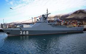 Картинка корабль, патрульный, Василий Быков
