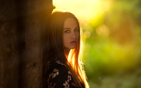 Обои girl, Model, green eyes, long hair, photo, sunset, tree, lips, face, brunette, trunk, portrait, mouth, ...