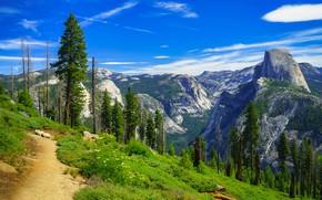 Картинка деревья, горы, Калифорния, тропинка, California, Yosemite Valley, Yosemite National Park, Сьерра-Невада, Долина Йосемити, Sierra Nevada, …