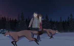 Картинка лисицы, ночь, дети, лес