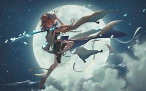 Картинка небо, девушка, рыбки, ночь, луна, меч