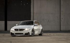 Картинка BMW, Light, White, F80, LED, M3