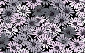 Картинка цветы, серый, фон, розовый, Background, Pattern, Floral