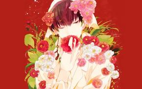 Картинка красный фон, Hoozuki no Reitetsu, Хладнокровный Хозуки, Хакутаку