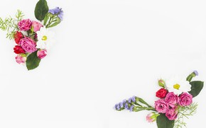 Картинка белый, цветы, фон, flower, pink, bouquet, roses, букеты