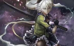 Картинка девушка, меч, арт, touhou
