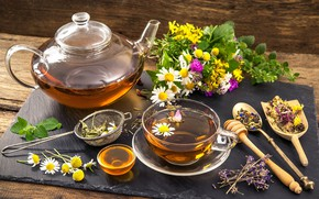 Картинка чай, ромашка, чайник, мед, травы