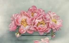 Картинка цветы, фон, букет, лепестки, арт, тычинки, розовые, ящик, живопись, пионы