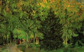 Картинка Винсент ван Гог, Garden at Arles, A Lane in the Public