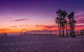 Картинка пляж, люди, вечер, Калифорния, атракционы