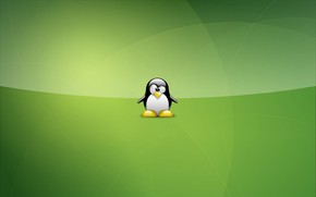 Картинка green, linux, Tux