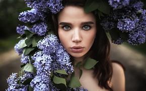 Картинка взгляд, девушка, лицо, настроение, портрет, сирень, Влад Попов, Наташа Князева