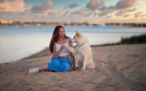 Картинка песок, девушка, река, собака, друзья, Дмитрий Шульгин