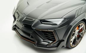 Картинка Lamborghini, фара, кроссовер, Mansory, Urus, 2019, Venatus