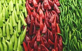 Картинка красный, зеленый, перец, острый, кучки, овощи, много, виды, острый перец, сорта, ассорти, перчик, стручковый