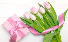 Картинка белый, фон, праздник, подарок, обои, лента, тюльпаны