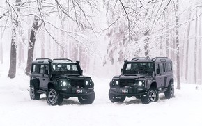 Картинка Land Rover, 2018, Defender, Land Rover Defender 110 by Ares Design 2018, 110 by Ares …