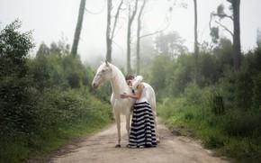 Картинка дорога, девушка, конь