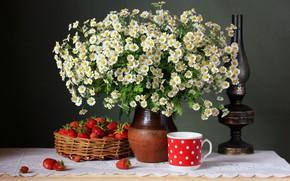 Картинка цветы, ягоды, ромашки, клубника, натюрморт, flowers, still life, camomile, strawbery