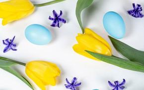 Картинка цветы, яйца, Пасха, тюльпаны, Easter