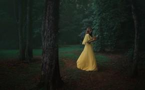 Картинка лето, девушка, парк, вечер, платье, книга, Alex Benetel