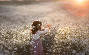 Картинка поле, лето, закат, цветы, природа, ромашки, девочка, венок, малышка, ребёнок, Кудрова Татьяна