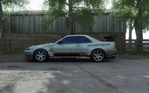 Картинка Nissan skyline, GTR R34, Top secret copy, Forza Horizon 4