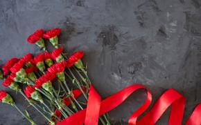 Картинка цветы, букет, красная лента, гвоздики