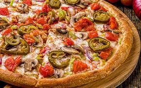 Картинка грибы, сыр, перец, овощи, пицца, помидоры, начинка