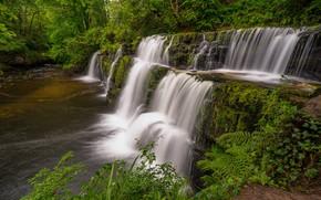 Картинка лес, река, Англия, водопад, каскад, England, Уэльс, Wales, Brecon Beacons National Park, Национальный парк Брекон-Биконс, …