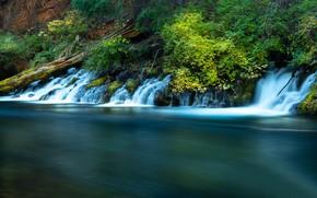 Картинка река, растительность, Орегон, водопады, каскад, Oregon, Река Метолиус, Metolius River