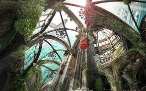 Картинка цветы, рыба, кит, под водой, оранжерея