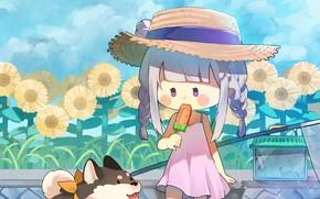 Картинка цветы, девочка, собачка