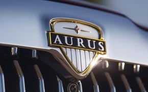 Картинка автомобиль, бренд, Сенат, Aurus, Senat, Аурус