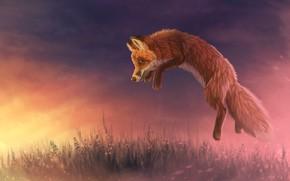Картинка закат, природа, прыжок, лиса, by CreeperMan0508
