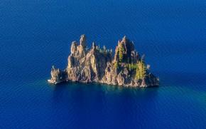 Картинка море, вода, скала, дерево, Остров