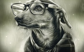 Картинка собака, очки, рисунок простым карандашом